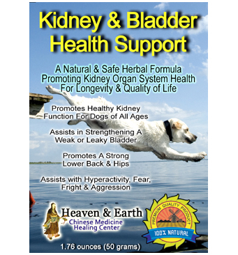 Kidney & Bladder Health Support Powder for Pets Main Web Image