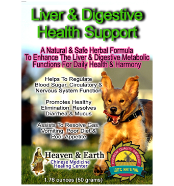 Liver & Digestive Health Support Dog Powder Main Web Image