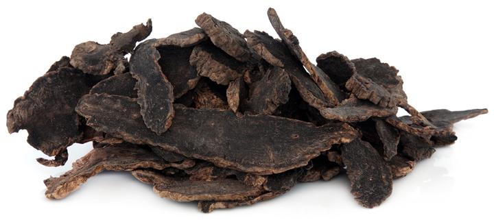 Xuan Shen Chinese herb