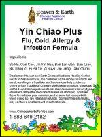 Yin Chiao Plus Chinese Herb Formula - Detail View